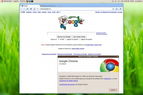 Google Chrome Linux 7