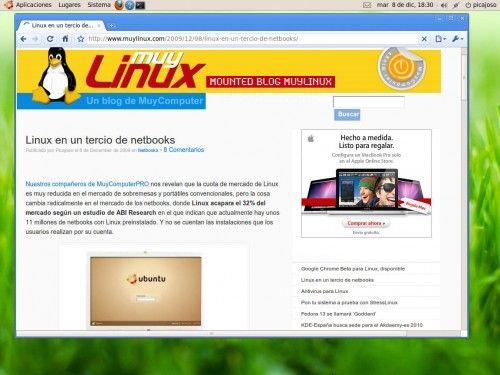 Google Chrome Linux 8
