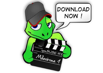 openSUSE11.3Milestone1