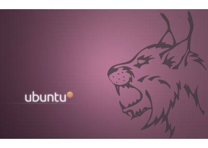 Ya está disponible para descarga Ubuntu 10.4 LTS final