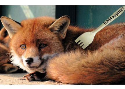 Firefox_h.264