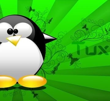 Tux_Wallpaper_by_Orange_Gimper