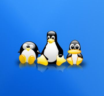Tux__S_WP_by_z_dark