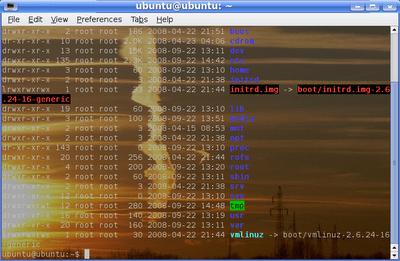 14 terminales en Linux para los fans del intérprete de comandos