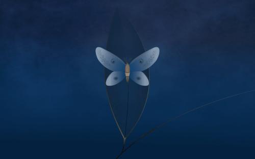1110-lubuntu-moth