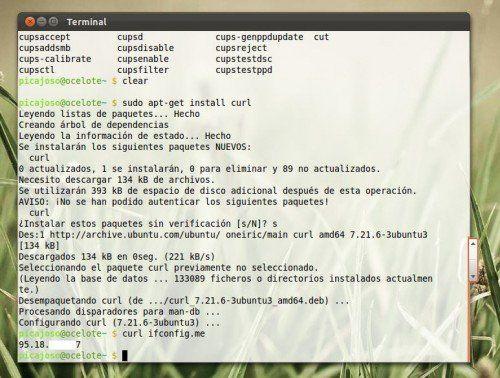 curl ip 500x378 Cómo averiguar tu IP pública desde la terminal
