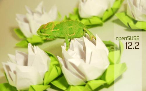 Chameleon3.1