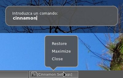 detalles-cinnamon