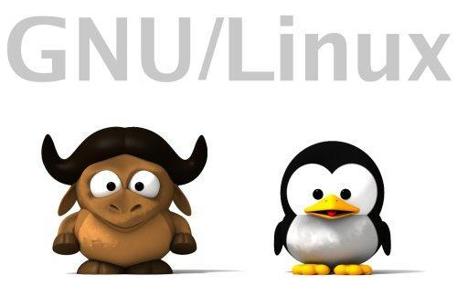 gnu linux Poll: What do you value most GNU / Linux?