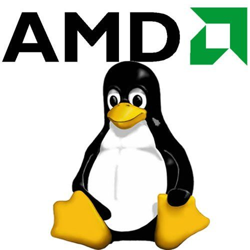 AMD-Linux-np