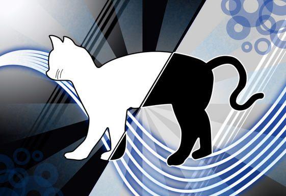 Fedora-19-Gato-Schrodinger