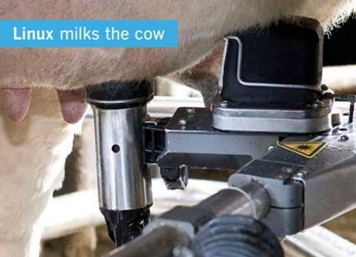 LPDCowMilking