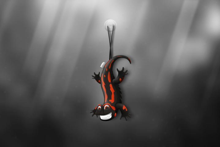 Salamander_by_Lucas_Romero_Di_Benedetto