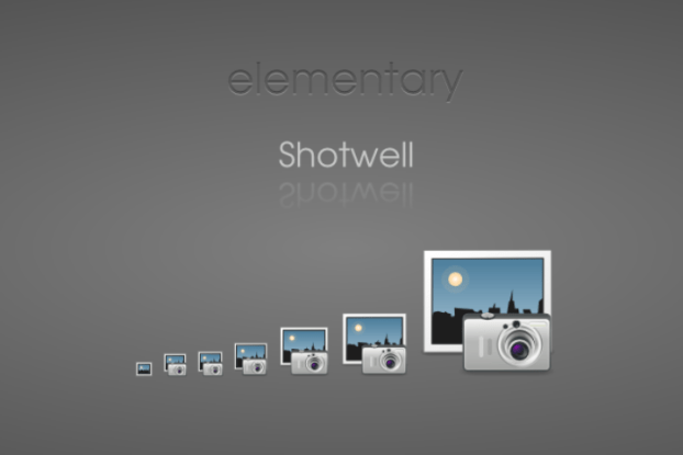 shotwell elementary