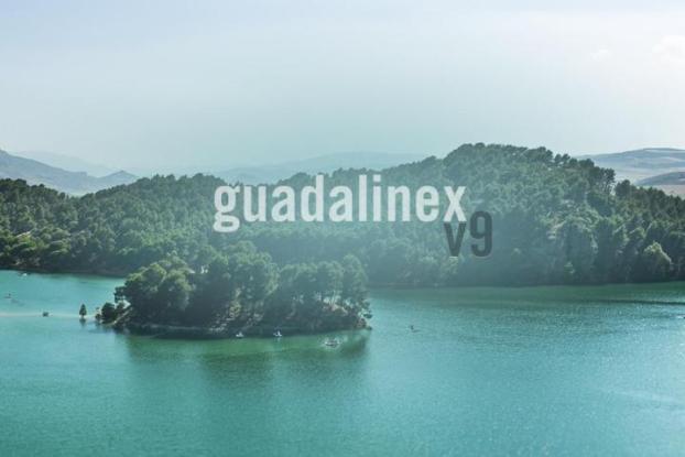Guadalinex v9