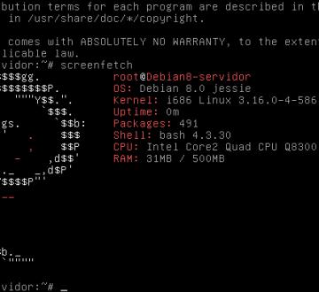 Debian 8 Jessie recién arrancado como servidor
