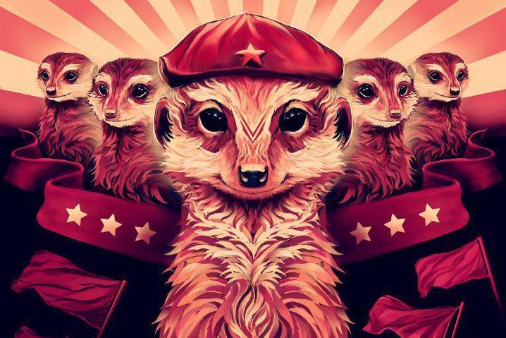 fauna ubuntu