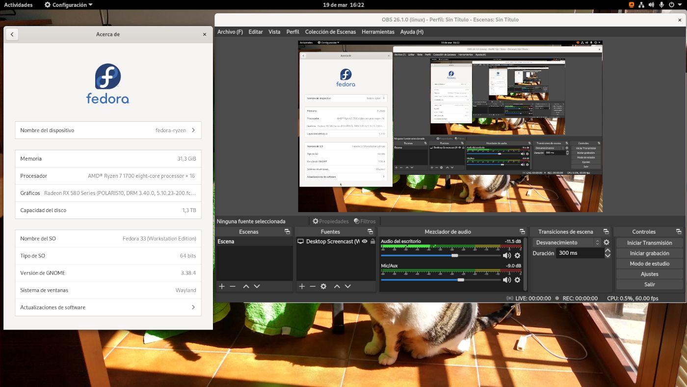 OBS Studio beta en formato Flatpak ejecutado en la sesión de Wayland de Fedora 33 Workstation