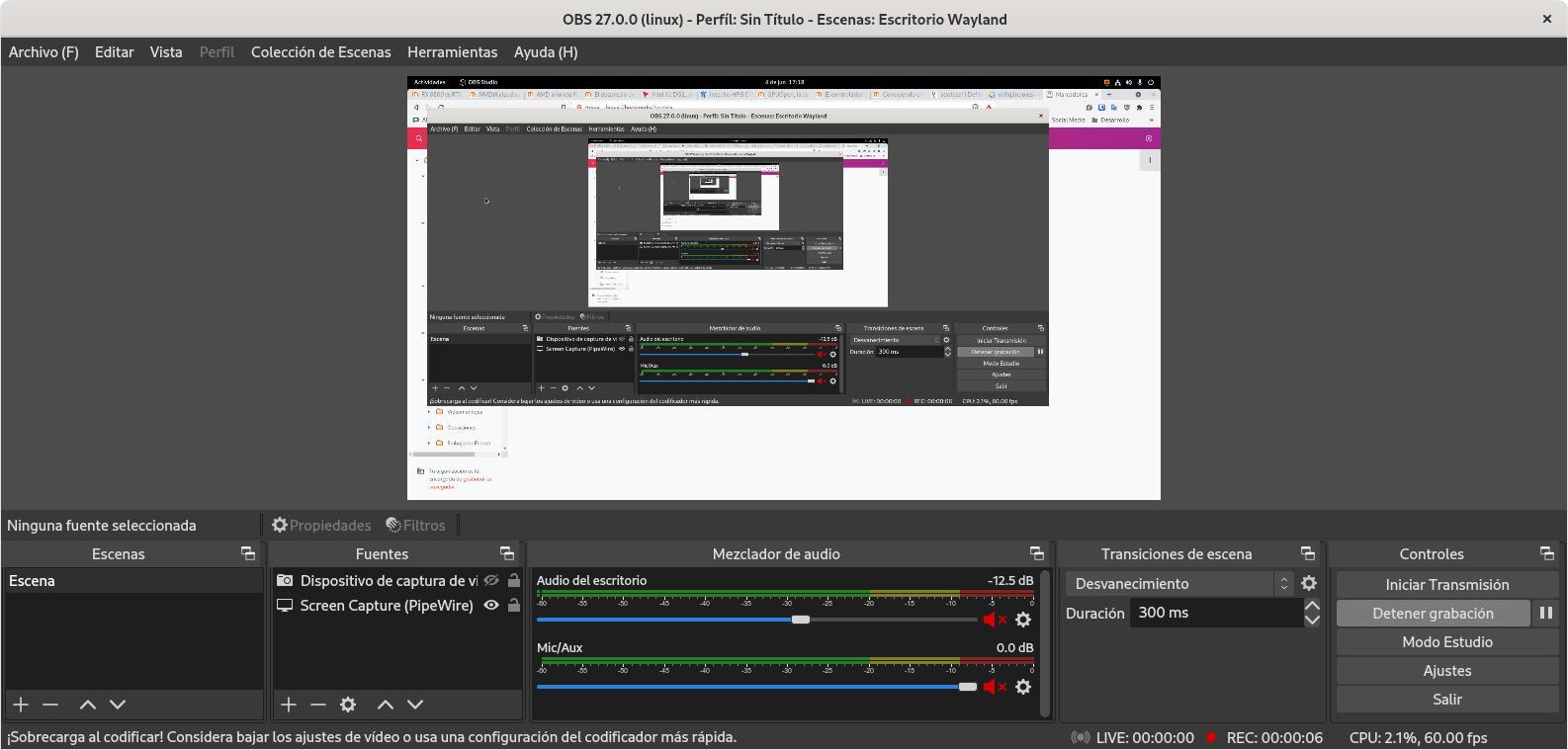 Sobrecarga al codificar en OBS Studio usando VA-API con una gráfica AMD Radeon en Linux